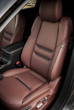 The comfortable, supportive seats feature Nappy leather in the top-of-the-line Signature Edition.